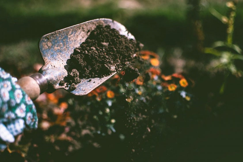A person digging in soil using a shovel